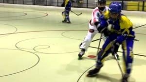 hockey inline serie b edera trieste finisce in bellezza.-5