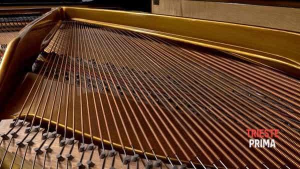 «Le stanze della musica» al Museo Schmidl: il pianoforte e tutti gli altri appuntamenti