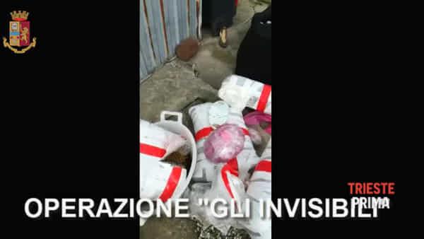 Boss del narcotraffico arrestato dalla Mobile di Trieste, il VIDEO dei sequestri