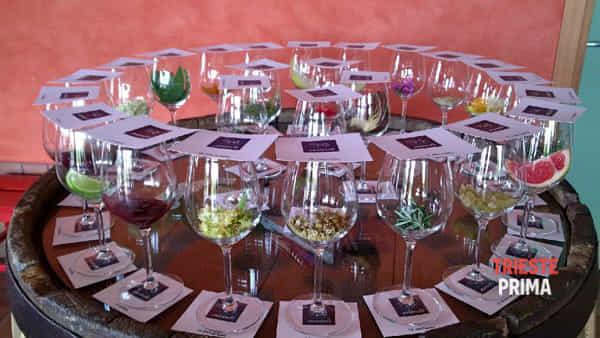 Cantine aperte: a Trieste visite guidate e degustazioni da Parovel