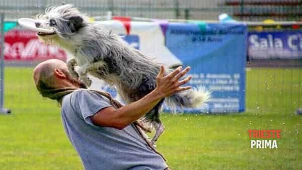Disc dog: stage con Fabio Sacco allo Sheepdog Isontino