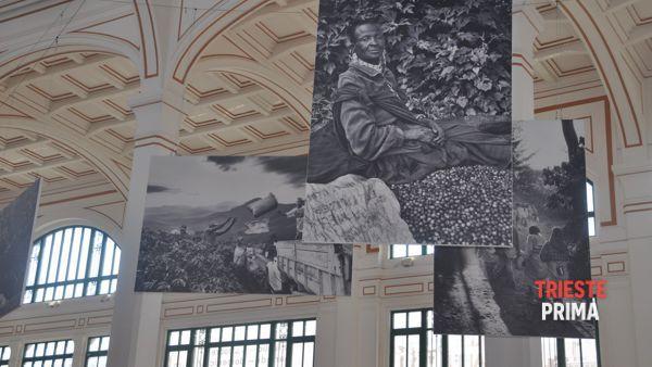 """""""Trieste capitale del caffè"""", domenica 27 settembre tris di iniziative al Salone degli Incanti"""