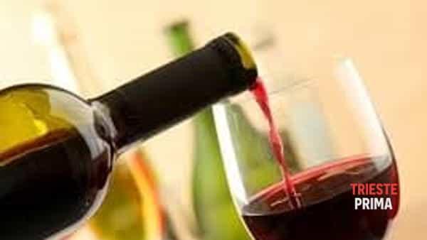 Onav: in partenza a marzo il corso per avvicinarsi al mondo del vino