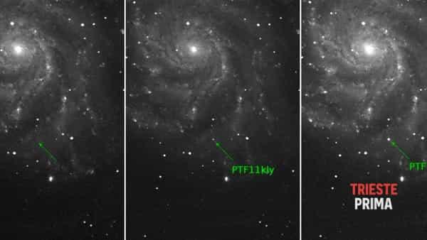 Viaggio nel cosmo: al Museo di Storia Naturale si parla di Supernovae