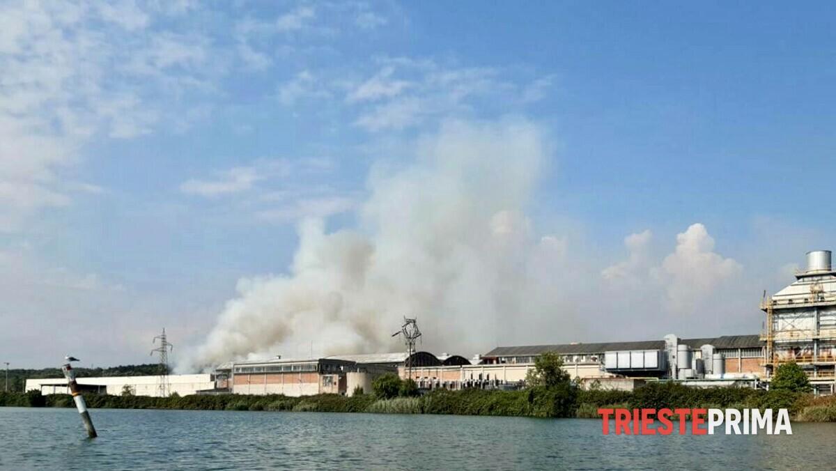 Incendio in zona Lisert: chiusa la statale tra Monfalcone e Duino (VIDEO)
