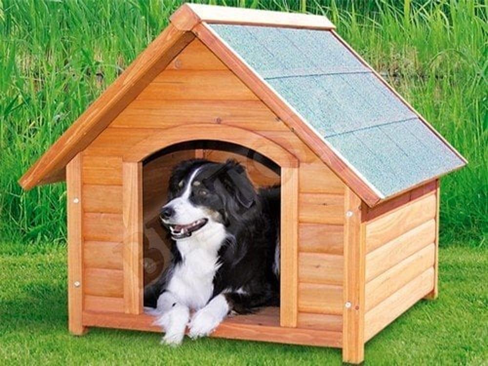 Casette In Legno Per Cani Fai Da Te.Fai Da Te Come Costruire Una Cuccia Per Cani In Legno